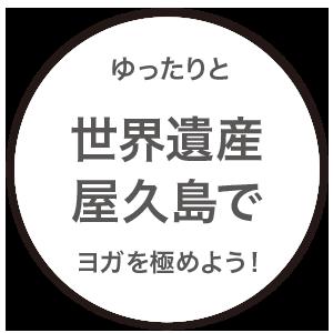 ゆったりと、世界遺産・屋久島でヨガを極めよう!