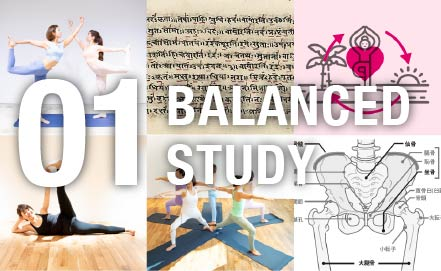 BALANCED STUDY